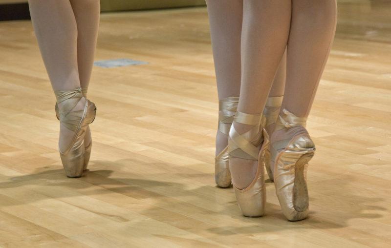 elgato Servicio de limpieza profesional de Escuelas de Danza