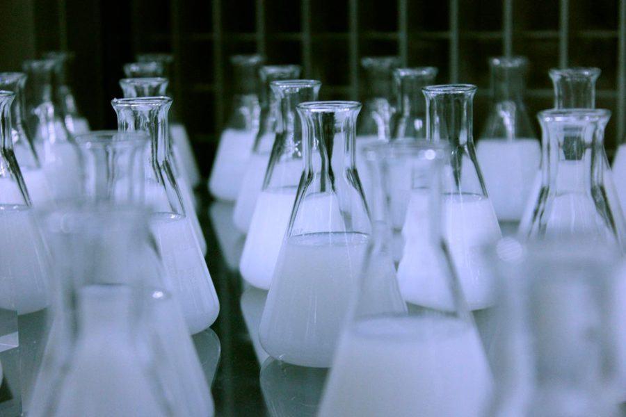 Productos de limpieza químicos. El Gato Limpieza